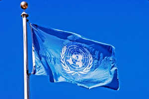 Halfax Translation Services Agency - References UN flag