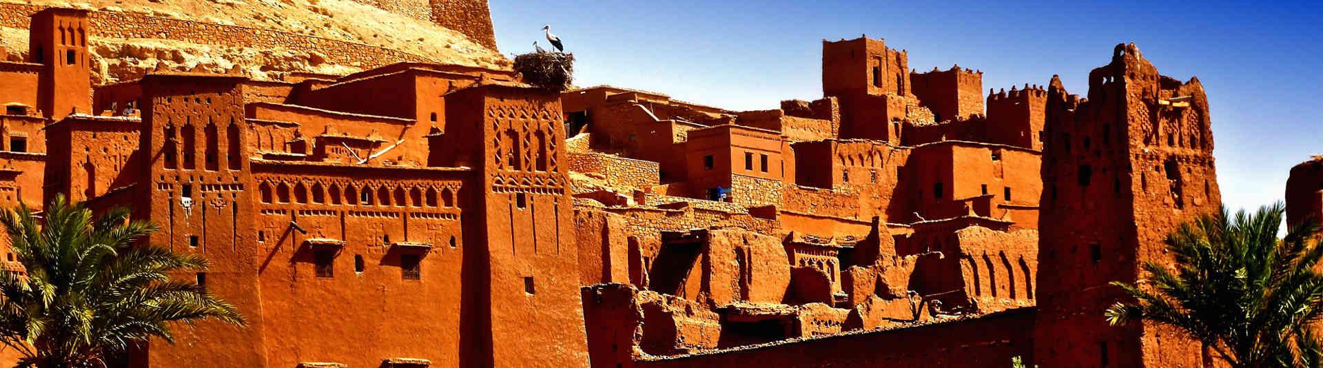 Morocco - Halifax Profesionalni prevod sa arapskog na srpski jezik i obrnuto